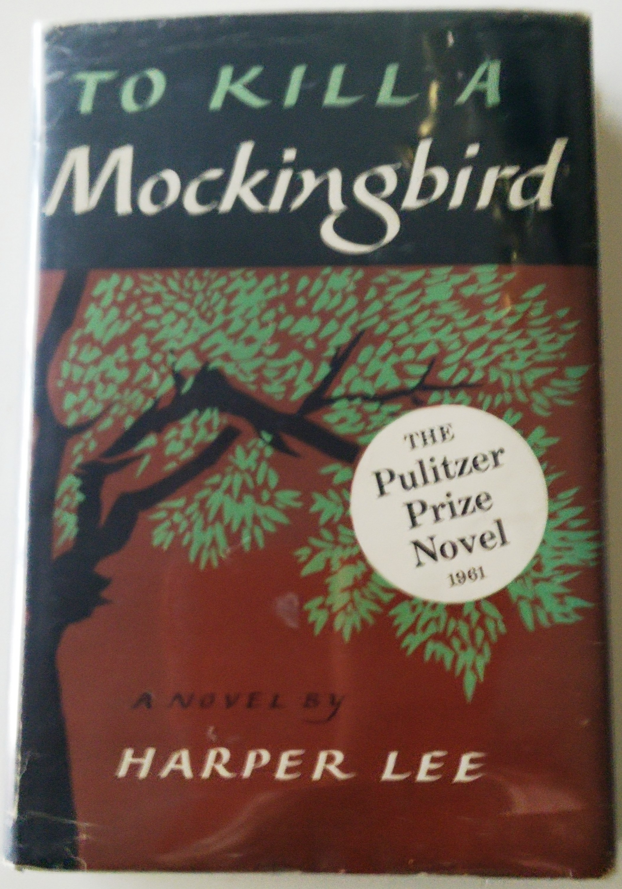 the expectations in the novel to kill a mockingbird by harper lee If you're reading or have read ms lee's classic novel, you'll love listlandcom's top 10 most important facts about to kill a mockingbird by harper lee.